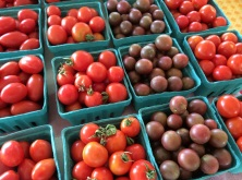 Tomatoes Wonder Acres