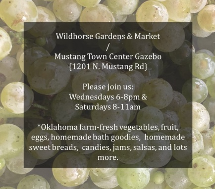 Wildhorse Farmers Market 7